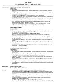 Director Of Security Resume Examples Director Security Resume Samples Velvet Jobs 19