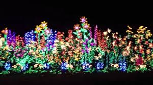 Bellevue Christmas Lights Botanical Garden Christmas Lights At Bellevue Botanical Garden Youtube