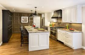 unfinished shaker kitchen cabinets. Unfinished Shaker Cabinet Doors Elegant White Kitchen Cabinets Lowes What Are Style