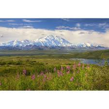 Sunny day home office Day Quotes View Of The North Side Of Mt Mckinley On Sunny Day With Mckinley River And Wonder Lake In The Foreground Denali National Park And Preserve Interior Alaska Desk Ideas View Of The North Side Of Mt Mckinley On Sunny Day With Mckinley