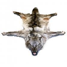 wolf rug rgg1077