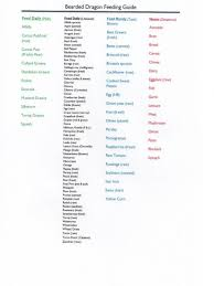 Bearded Dragon Nutrition Chart Bearded Dragon Food Chart Bearded Dragon Diet Bearded