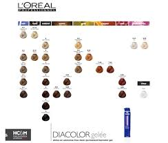 Loreal Diacolor Chart Diacolor Richesse Colour Chart