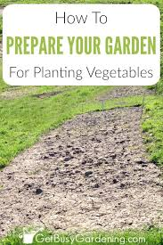 weeding amending and cultivating the soil are important steps for preparing garden beds for planting