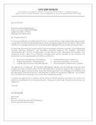 Executive Cover Letter Examples Sample Risk Management Cover Letter Government Job Cover Letter