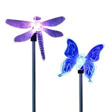 pack of 2 solar dragonfly led color