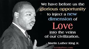 I Have A Dream Speech Quotes Interesting Dr Martin Luther King Jr Quote Incredible Pictures I Have A Dream