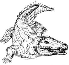 Small Picture Crocodile Coloring Pages To Print