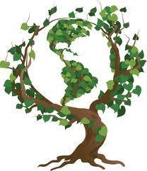 medicinal plants n medicinal plants and their uses herbal medicinal plants and their uses