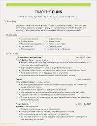 English Cv Sample Pdf Examples Uk Engineering Download