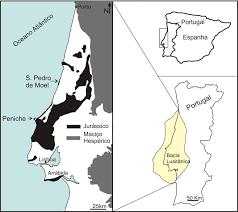 Resultado de imagem para lowerjurassic bacia lusitanica