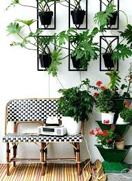 Plants In Living Room Awesome Design Ideas