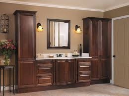 Dark Cabinet Bathroom Creative Of Bathroom Cabinet Design Ideas With Designs Of Bathroom