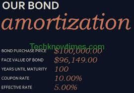 Amortization Bonds Bond Amortization Schedule In Excel Template