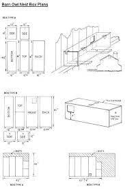 11 elegant great horned owl house plans