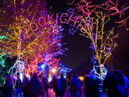 Dc Holiday Lights Tour Where To See Holiday Light Displays In Washington D C This
