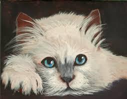 blue eyes w