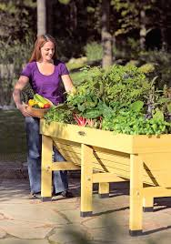 vegtrug raised garden bed