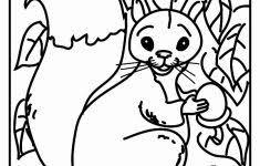 Kleurplaat Eekhoorn Uniek Kleurplaat Eekhoorn Met Eikel Archidev