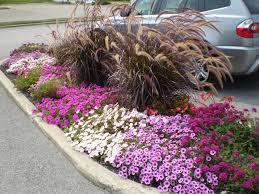 Small Picture perennial garden designs for sun Margarite gardens