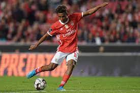 Gedson Fernandes Joins Tottenham Hotspur on 18-Month Loan | Bleacher Report  | Latest News, Videos and Highlights