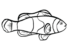 Betta Fish Coloring Page Printable Fish Coloring Pages Free