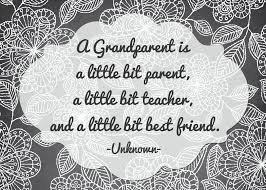 Image result for grandparents day activities
