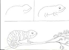 Daffodil craft chameleons art lessons and school rh pinterest chameleon life cycle chameleons using their tails