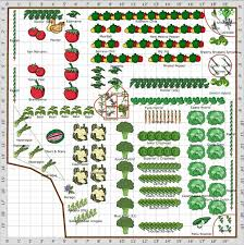 christine s vegetable plot plan