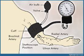 Blood Pressure Diagram Blood Pressure Monitor How To Choose The Right Monitor