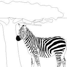 Small Picture Drawing zebra coloring Animals coloring to print