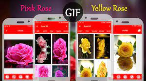 Rose GIF for Android - APK Download