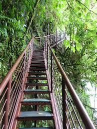 waterfall walkway in la paz waterfall gardens costa rica