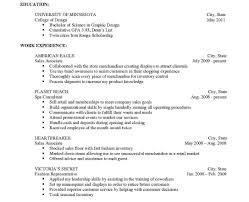 Sample Resume Microsoft Word Smart Action Plan Template Word