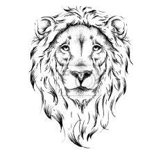 Fototapeta Etnická Ruční Kresba Hlavy Lev Totem Tetování Použijte Pro