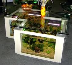 office desk fish tank. Office Desk Fish Tank Also Aquarium For  After Tanks To