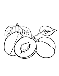 Small Picture 500 best Food Drink and Cooking Coloring Pages images on