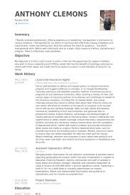 Insurance Agent Resume Sample And Get Ideas Create Your With