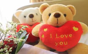 teddy day 2016 hd wallpapers images pics photos for desktop mobile free
