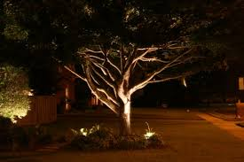 tree lighting ideas. Tree Lighting Ideas. Interior Outdoor Ideas M :