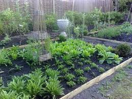 Small Picture 50 best Potager Garden images on Pinterest Potager garden