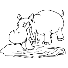 Small Picture Coloring Page Hippo animals coloring pages 11