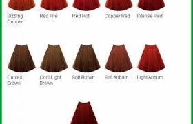 Loreal Red Hair Colour Chart Loreal Permanent Hair Colour Shades Chart Www