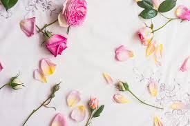 Types of Roses: A Visual Compendium - FTD.com