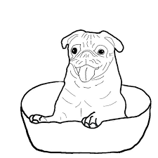 Small Picture Pug is Happy Inside a Bowl Coloring Page Color Luna