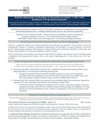 Cio Resume Resume Templates