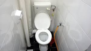 Image result for sitting public toilets in malaysia
