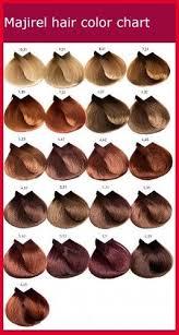 Loreal Professional Hair Color Chart Richesse 470825 Majirel