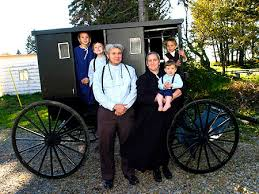 cultural anthropology through the eyes of an insider outsider s  the amish use titles like son daughter brother sister wife husband etc and this reflects a sort of hybrid of eskimo and iroquois naming system