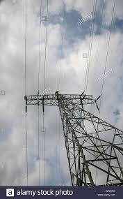 electrical power line installers and repairers dutch electrical power line repairers at work stock photo 65289824